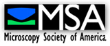 Microscopy Society of America | SynSysCo